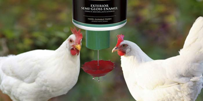 demand feeder poultry